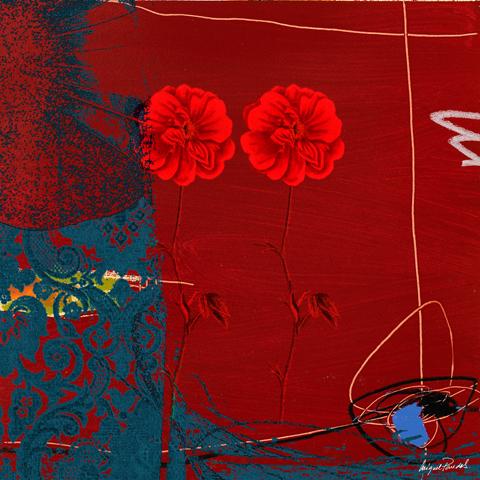 Anthropology V MP0102 F6086